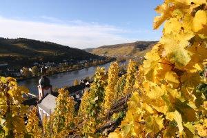 ... 15: Kordel (Bhf) – Burg Ramstein – Trier | guidowke's wandelblog